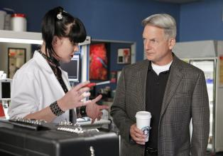 Navy CIS - Versuchen einen Fall aufzuklären: Abby (Pauley Perrette, l.) und Gibbs (Mark Harmon, r.) ... © CBS International Television (ehem: Paramount Pictures International)