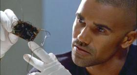 Special Agent Derek Morgan (Shemar Moore) inspiziert eine gefundene Rohrbombe des Attentters.  Touchstone Television