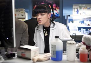 Gibt alles, um einen neuen Fall aufzudecken: Abby (Pauley Perrette) ...  CBS Television